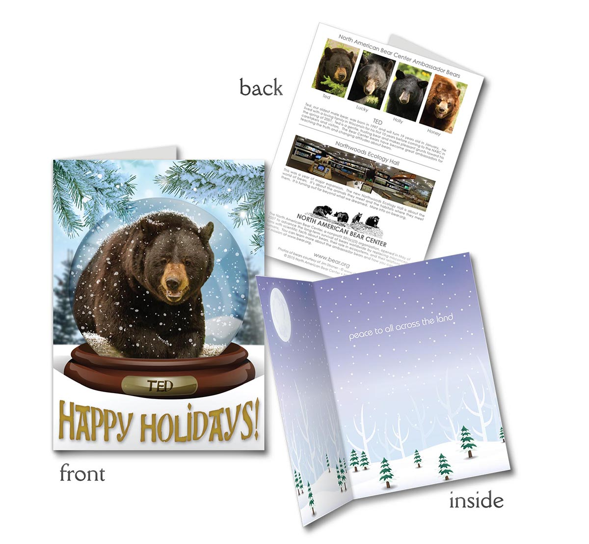 Daily update wednesday 07 december 2016 the wildlife for Wildlife christmas cards 2016