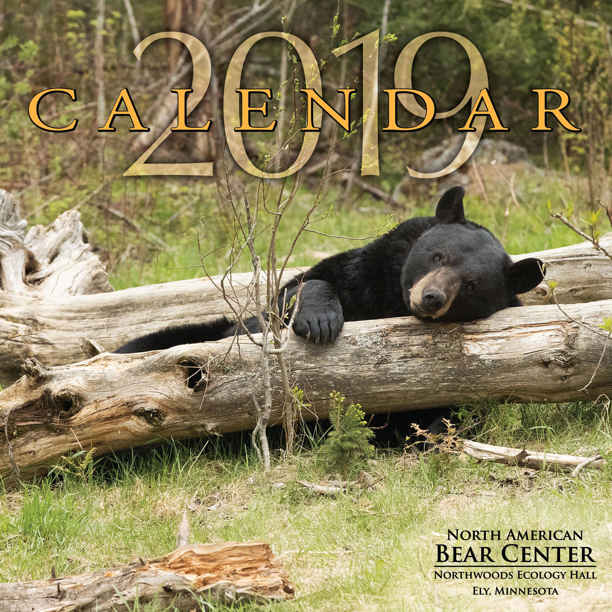 bear center 2019 calendar - update august 30  2018