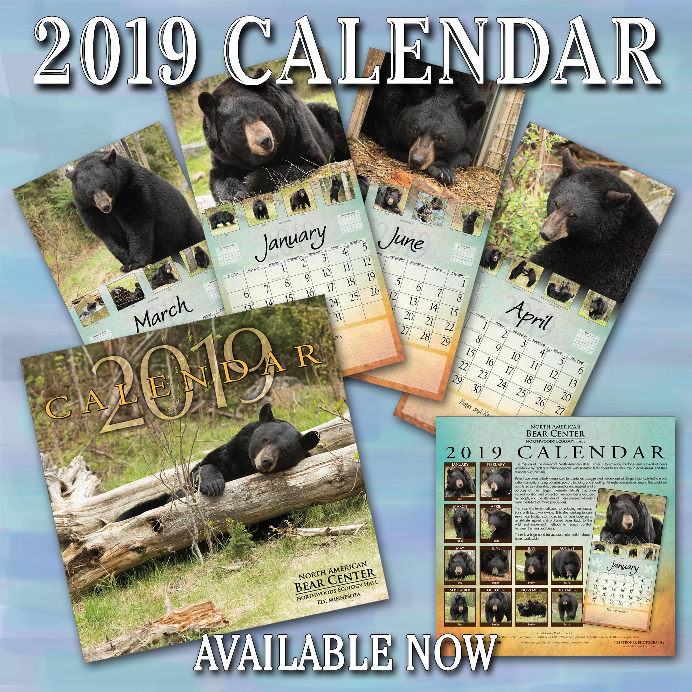 Bear Center 2019 Calendar