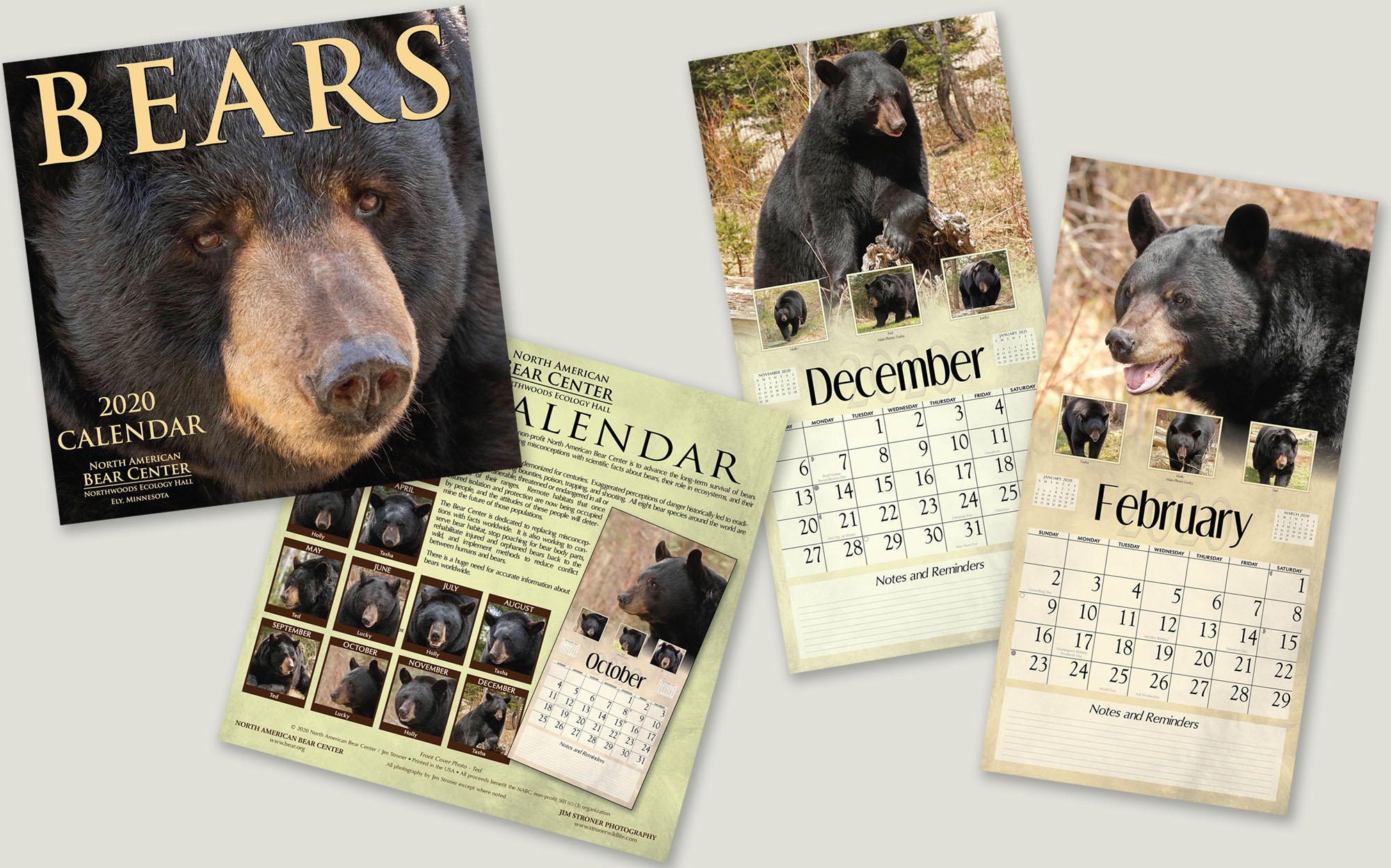 Wildlife Christmas Cards 2020 2020 Calendars and Christmas Cards   UPDATE November 18, 2019